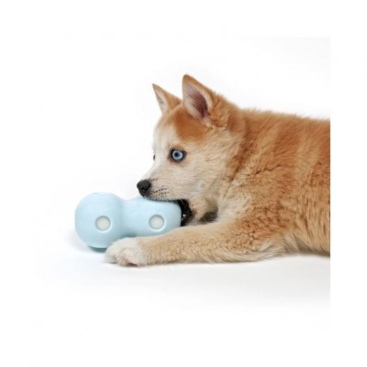 EBI Petit Wasserspielzeug Coco für Welpen